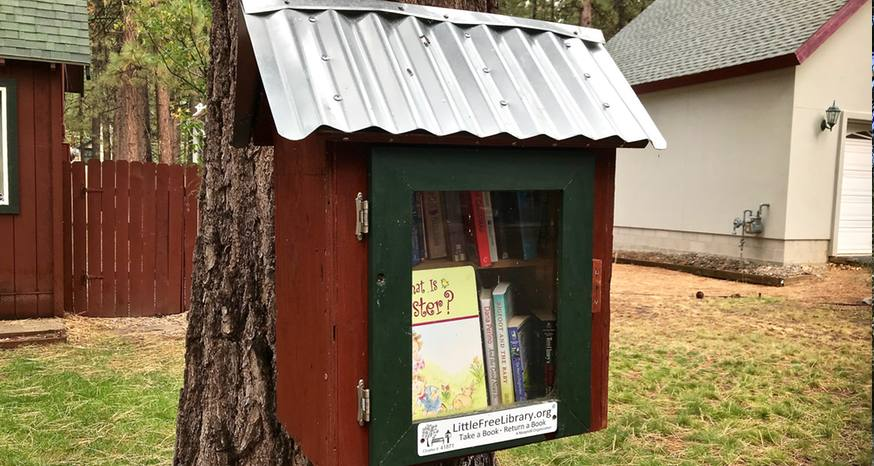 Tiny libraries bring books to neighborhoods throughout the world