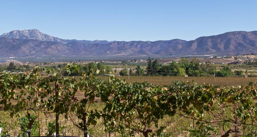 Baja wine country fighting to retain its rural character