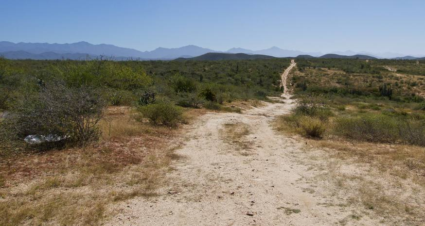 Plenty of desert terrain to explore near Todos Santos