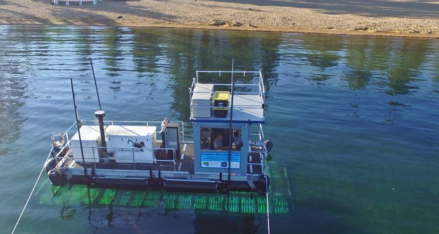 Ultraviolet light successfully ridding plants from Tahoe's waters