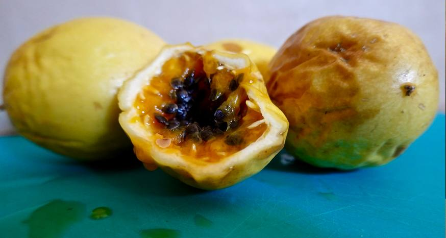 Tiny passion fruit packed with flavor, nutrients