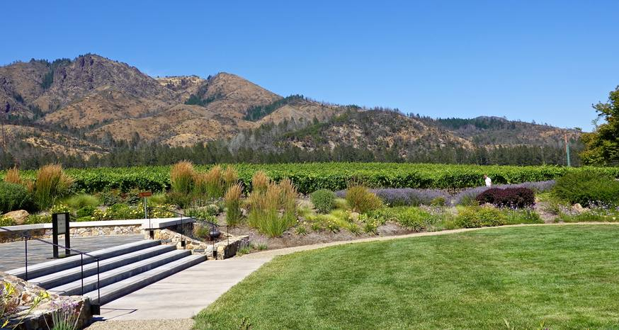 St. Francis Winery worth a stop when in Sonoma Valley